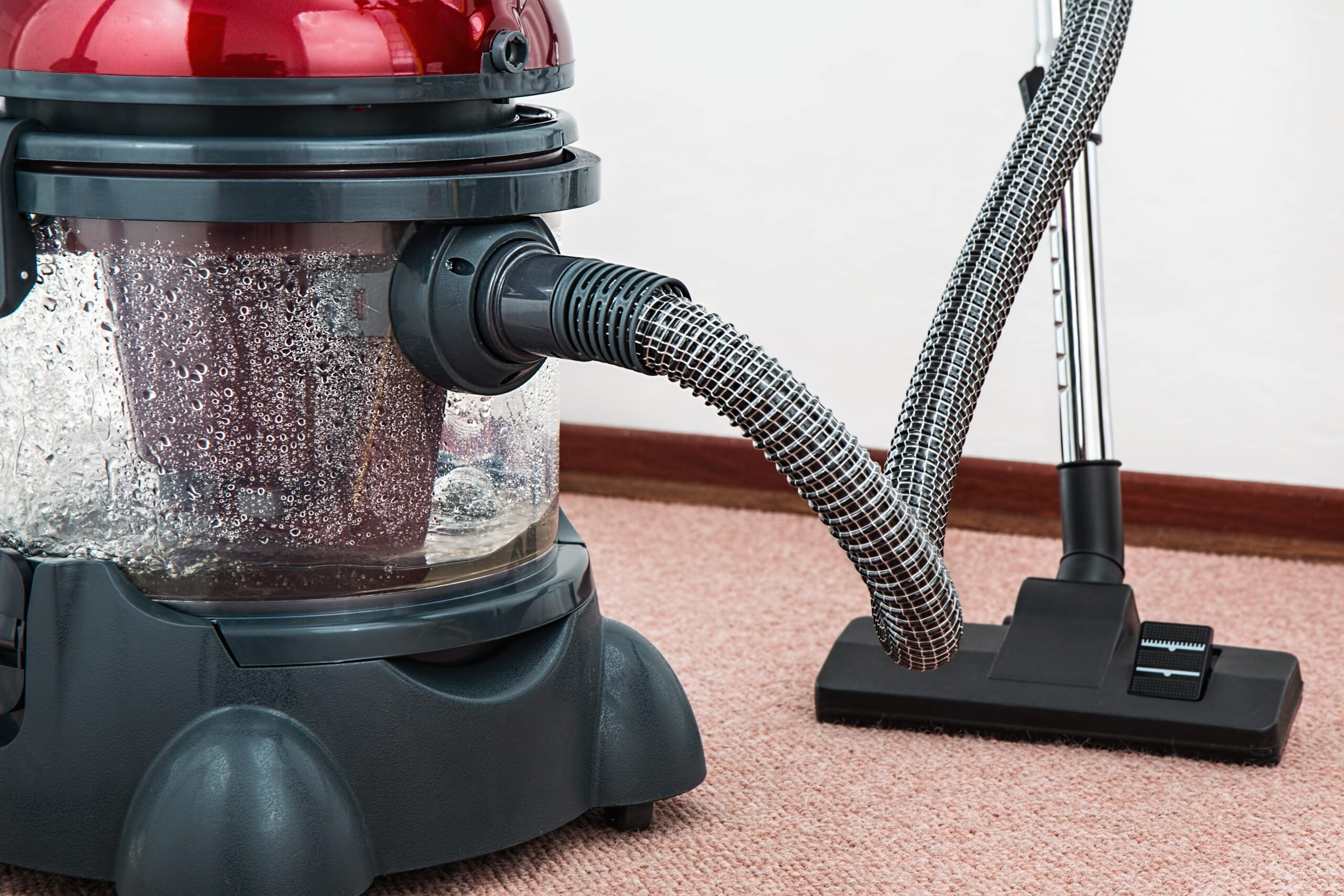 Feces and Urine Cleanup – NYC & Long Island